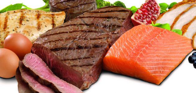 proteine_alimentazione